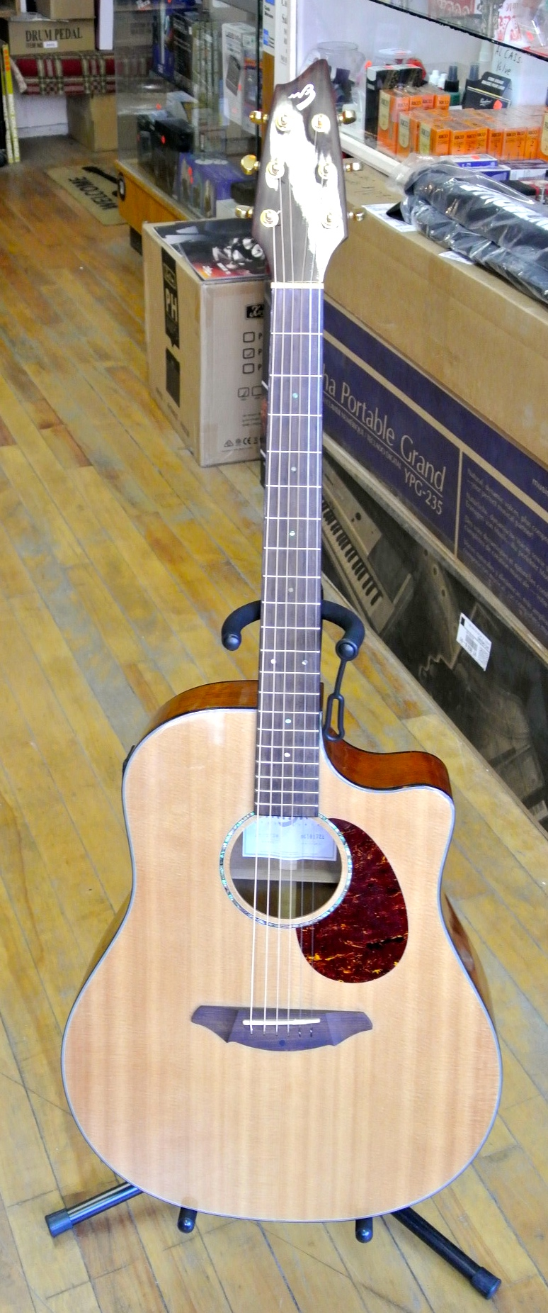 Used Breedlove AD25/SW